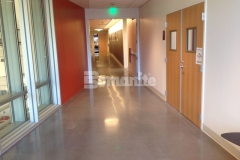 Premier Concrete Construction used the Bomanite Modena Custom Polishing System to create a distinctively beautiful, decorative concrete flooring surface at the Deerfield Academy Hess Center for the Arts, adding durability and functionality to the interior space.