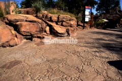 The Chihuahuan Desert exhibit at the El Paso Zoo features a stamped concrete dry riverbed that was created using the Bomanite Bomacron Garden Stone pattern and natural English Slate texture with various stone sizes that mimic the desert rock riverbed landscape and add a distinct, decorative touch to the exhibit.